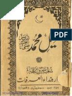 کفیل محمد صلی اللہ علیہ وسلم
