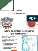 Teo Globoocular y Oido2013