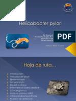 helicobacterpylori-100511212916-phpapp02