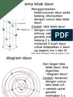 Diagram Daun-diagram Bunga