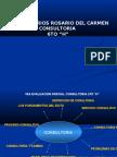 Consultoria 6h Calderon Rios Rosario Del Carmen