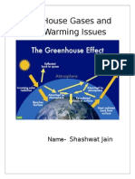 Green House Gases and Global Warming Issues
