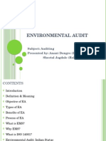 Environmental Audit