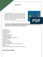 Cuadernillo de Actividades Etapa Diagnostica 1º e.s