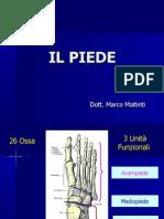 Medicina - Il Piede Anatomia E Fisiologia Articolare