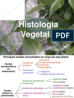 7A - TECIDOS VEGETAIS part i