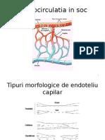 Mocrocirculatia in Soc