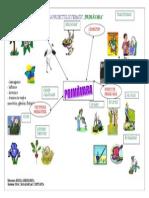Harta Proiectului Tematic Primavara