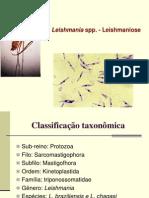 5a Aula Protozoologia Leishmania e Leishamniose