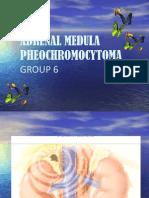 Adrenal Medulla Pheochromocytoma