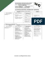 Estructura Curricular Educación Física