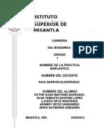 BIOPLASTICO PRACT.docx
