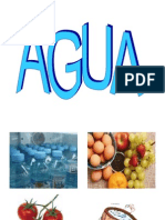 aguaenalimentosiagi-102-100827170435-phpapp02.pdf