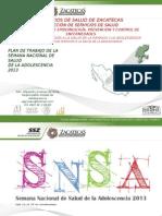 Plan de Trabajo de La SNSA 2013 Zacatecas