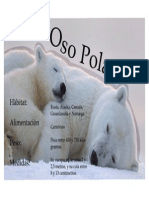 Ficha Técnica oso polar