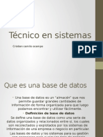 presentacion power point de la base de datos