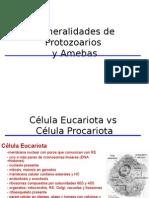 02 Generalidades de Protozoarios y Amebas