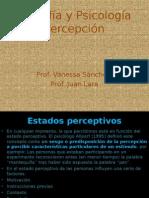 percepcion-3c2bam