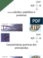 AA Proteínas