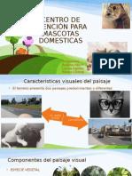 diseño EXPO.pptx