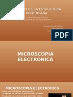 Microscopia Electronica 1