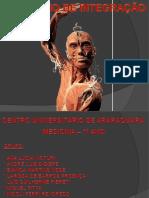 SEMINÁRIO DE INTEGRAÇÃO2