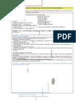 13.TEMA+2.3.+LAS+ACCIONES+TECNICAS+EN+LOS+PROCESOS+ARTESANALES