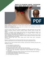 Terapi-Es-Batu-Feng-Fu.docx