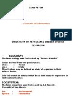 Ecosystem New