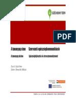 13_Szervezeti_egeszsegkommunikacio_es_egeszsegfejlesztes1208.pdf