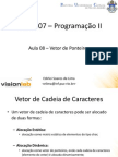 Prog2 Aula 08 Vetor Ponteiros 2014