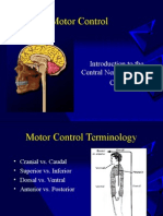 Introduction to Motor Control