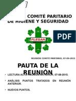 REUNIÓN CPHS_07-09-2015.ppt