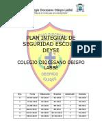 12 Plan Integral Deyse 2013
