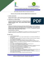 Bases Concurso Cas Nº 004-2014 Pirdais