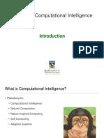 11.0 Computational Intelligence