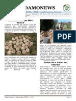 Sidamo News 40 - sett 2015