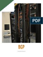 Taller BGP Sergio.pdf
