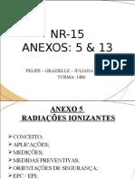 Anexos Nr-15 - Cópia