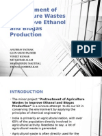 Project on nanoparticle production from wheat straw