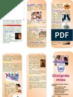 Triptico Dislipidemia Rut