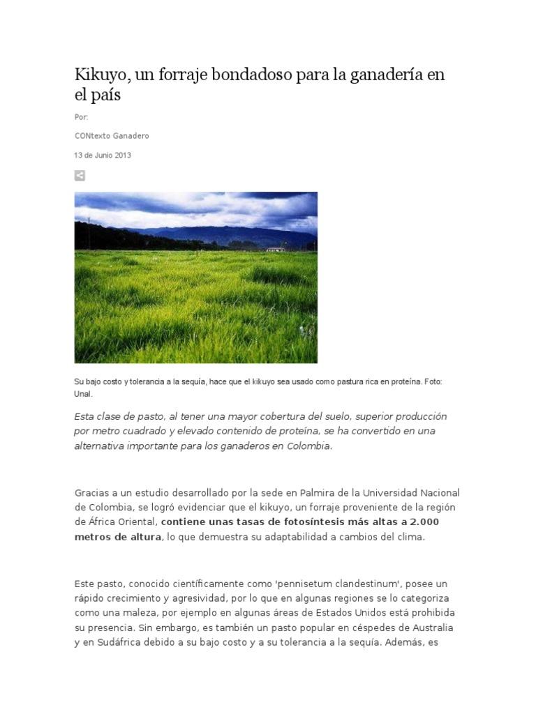 Dorable Uña Rota Por Debajo De La Rápida Foto - Ideas Para Esmaltes ...