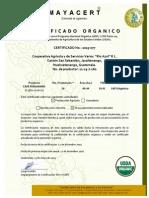 RioAzul NOP 2015