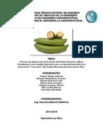 Proyecto-Harina-de-Platano-Actual (1).docx