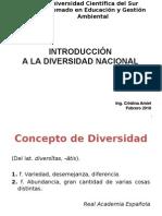 Divers Id Ad Nacional - Ing. Cristina Amiel 24.02.10