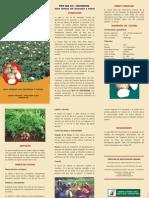 foto papa chucmarina.pdf