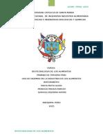 biotecnologia-enzimas (1)