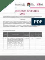 Convocatoria EJ 2015
