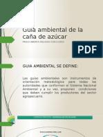 Guía Ambiental de La Caña