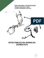 INYECTABLES EN ANIMALES DOMESTICOS